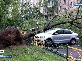 Разрушительные ураганы сплотили россиян
