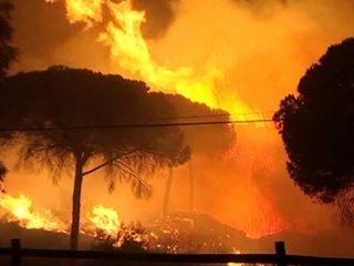 Пожар в Андалусии: эвакуировано более двух тысяч человек