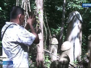 Кхмеры молятся на фаллосы Полонского