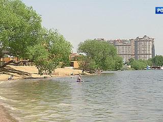 Московские пруды очистят специальные бактерии