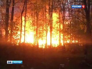 Тимирязевский парк превращается в шашлычную