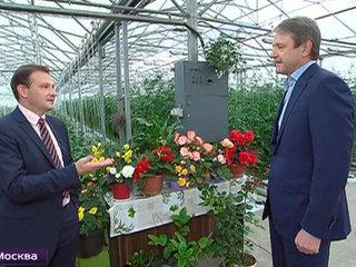 Санкции изменили взгляды россиян на продовольственную независимость