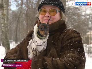 Вести-Москва. Неделя в городе. Эфир от 11 декабря 2016 года