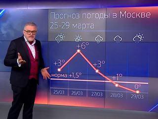В Москву вернулся снег