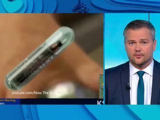 Офисный планктон: в сотрудников вставляют чипы