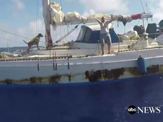 ВМС США спасли двух женщин и двух собак, дрейфовавших 5 месяцев на яхте в океане