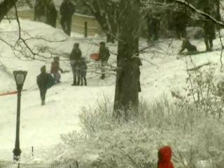 На северо-востоке США из-за снежного шторма отменено более четырех тысяч авиарейсов
