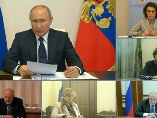 Совещание Владимира Путина с рабочей группой по поправкам в Конституцию