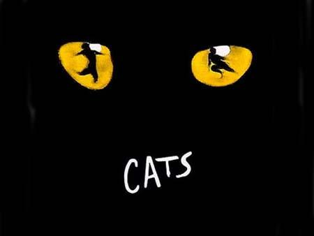 Мюзикл британского композитора Эндрю Ллойд Уэббера ''Кошки'' (''Cats''). Фото с сайта http://en.wikipedia.org